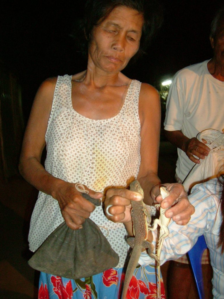 Local lizard vendor for Thai new yearr