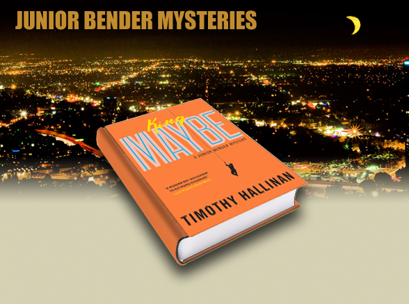 Comical Crime Caper Set in Hollywood by Timothy Hallinan
